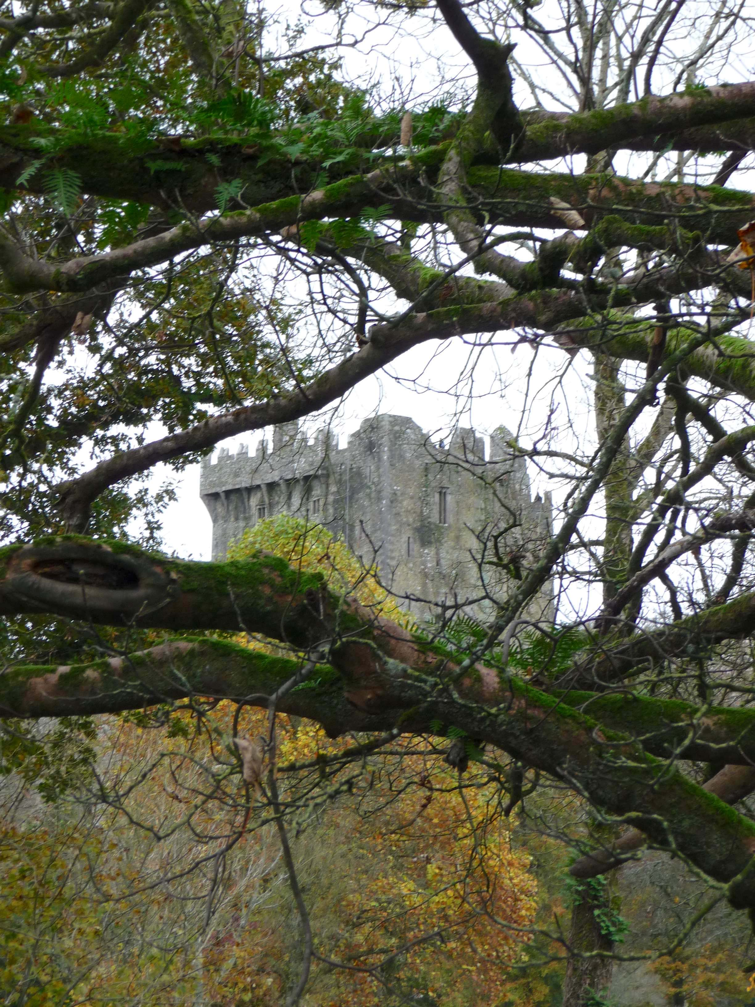 1.Blarney Castle