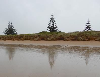 3.Godfreys Beach