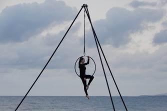 5.acrobat
