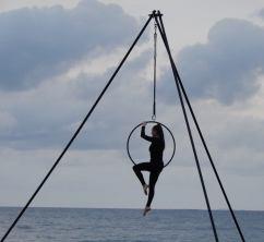 6.acrobat