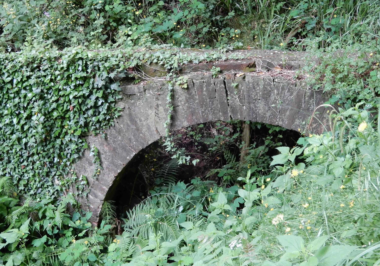 35.bridge