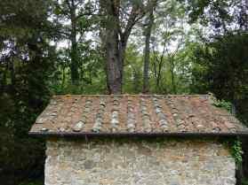 6.Old Tramonte walk
