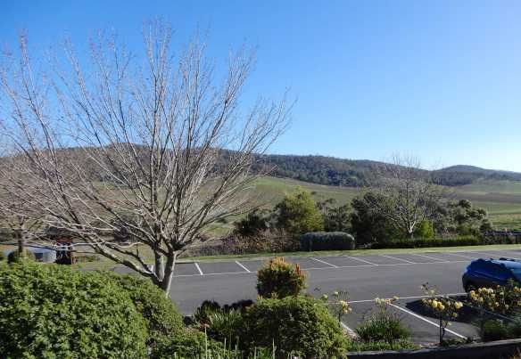 11.view from cellar door