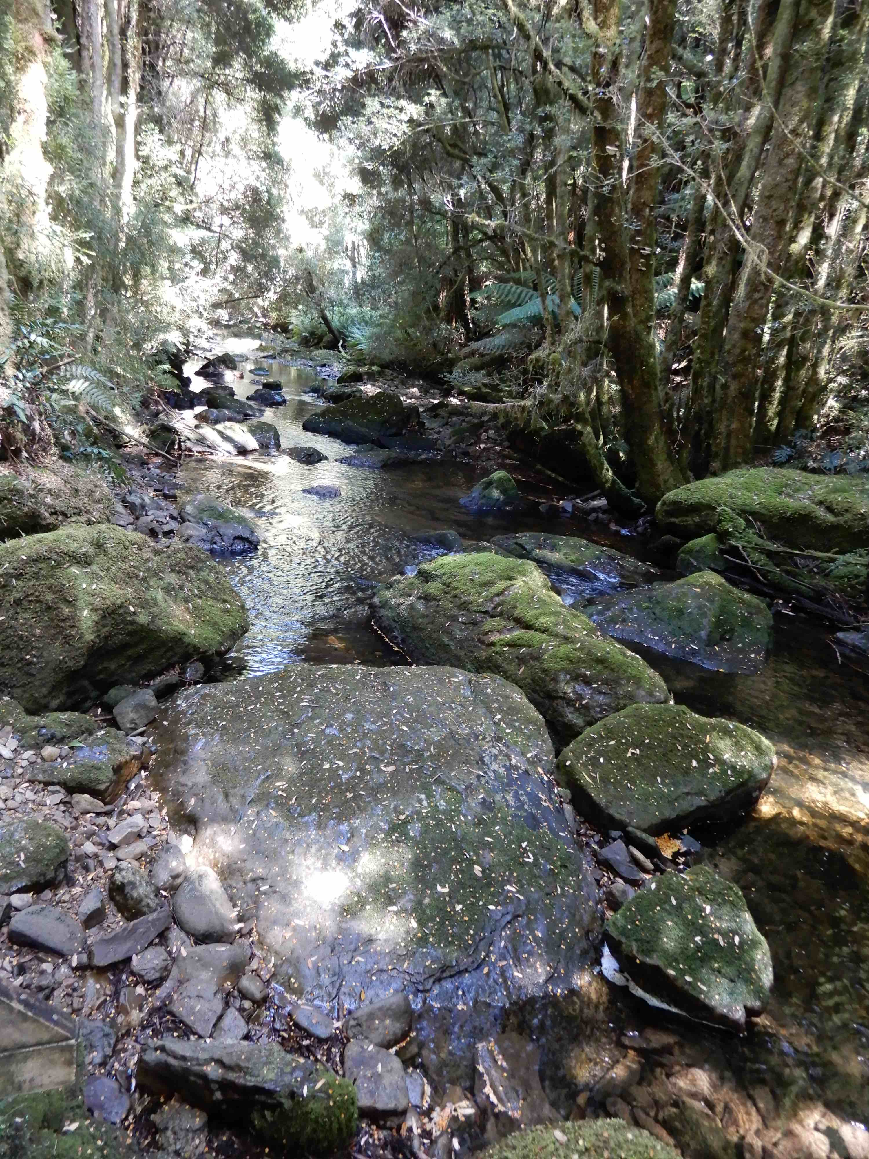2.Nelson River
