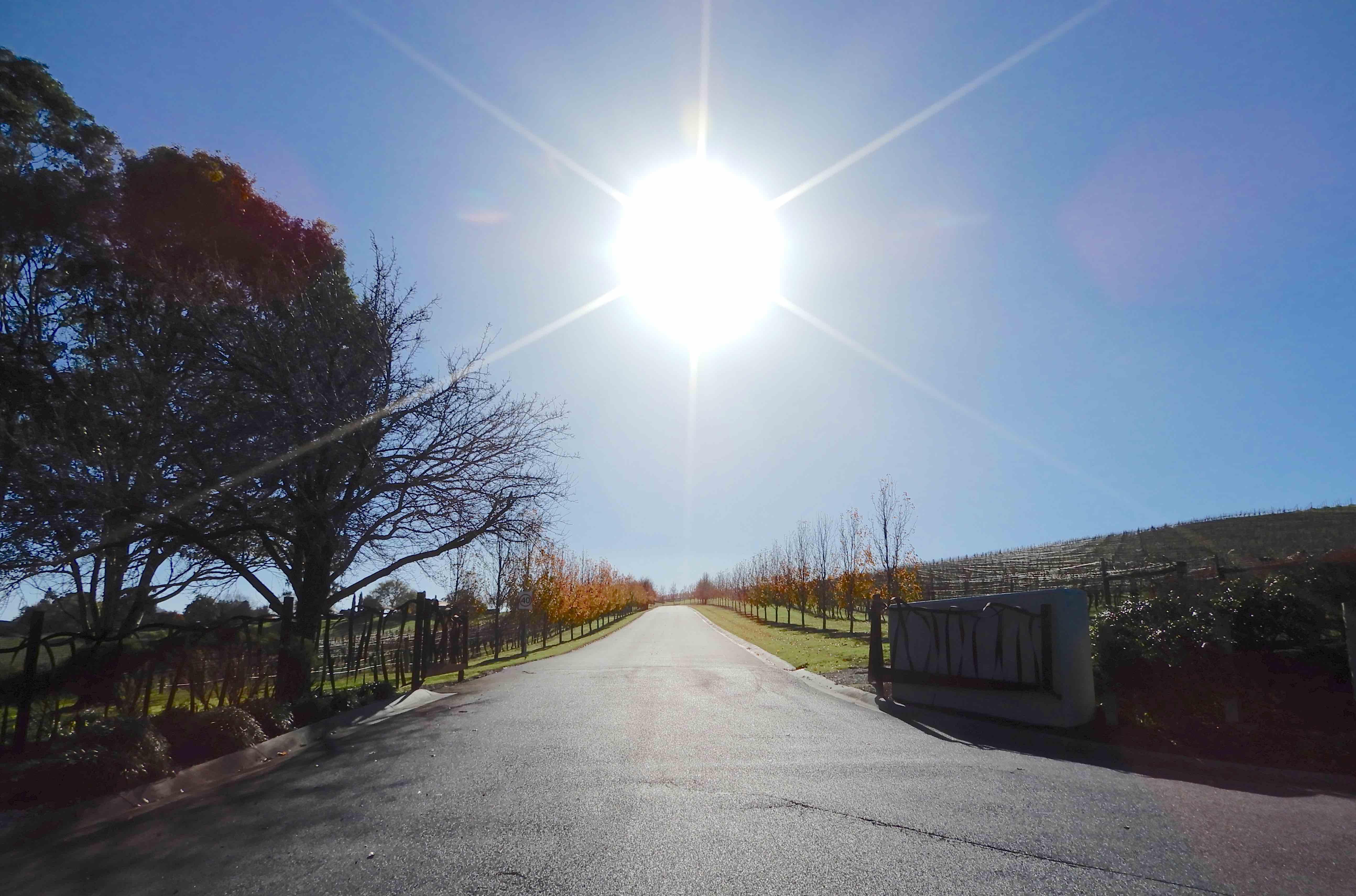 3.DeBortoli driveway