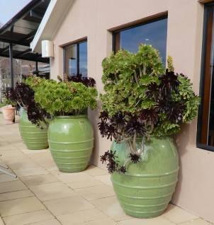 17.plant pots