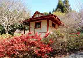 32.Japanese Tea House