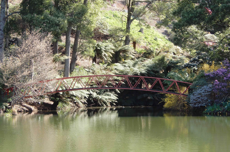 53.Olympus Bridge