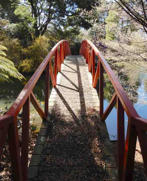 57.Olympus Bridge