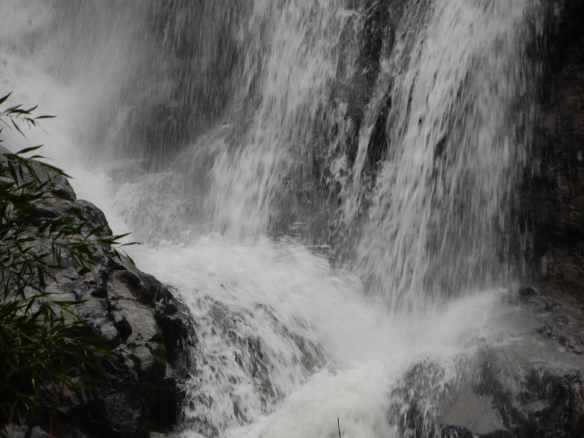 9.Steavenson Falls