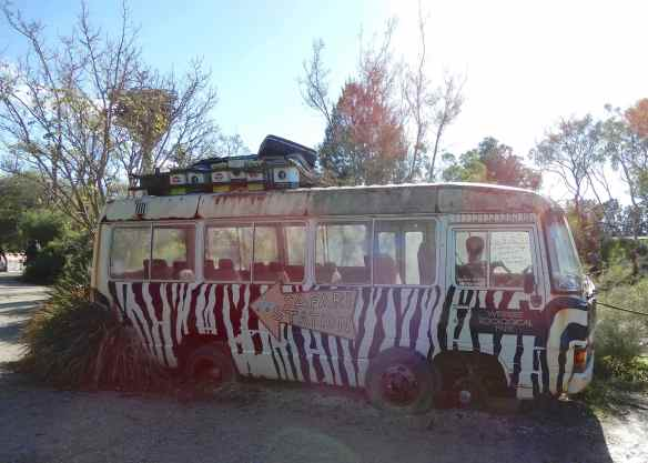1.Safari Bus