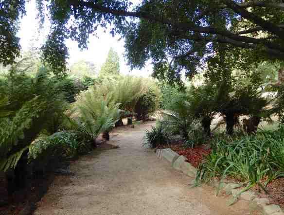 14.garden path