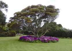 3.garden