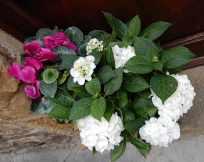 13.flowers