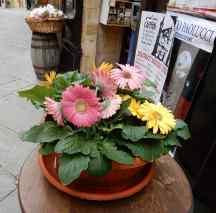 15.flowers