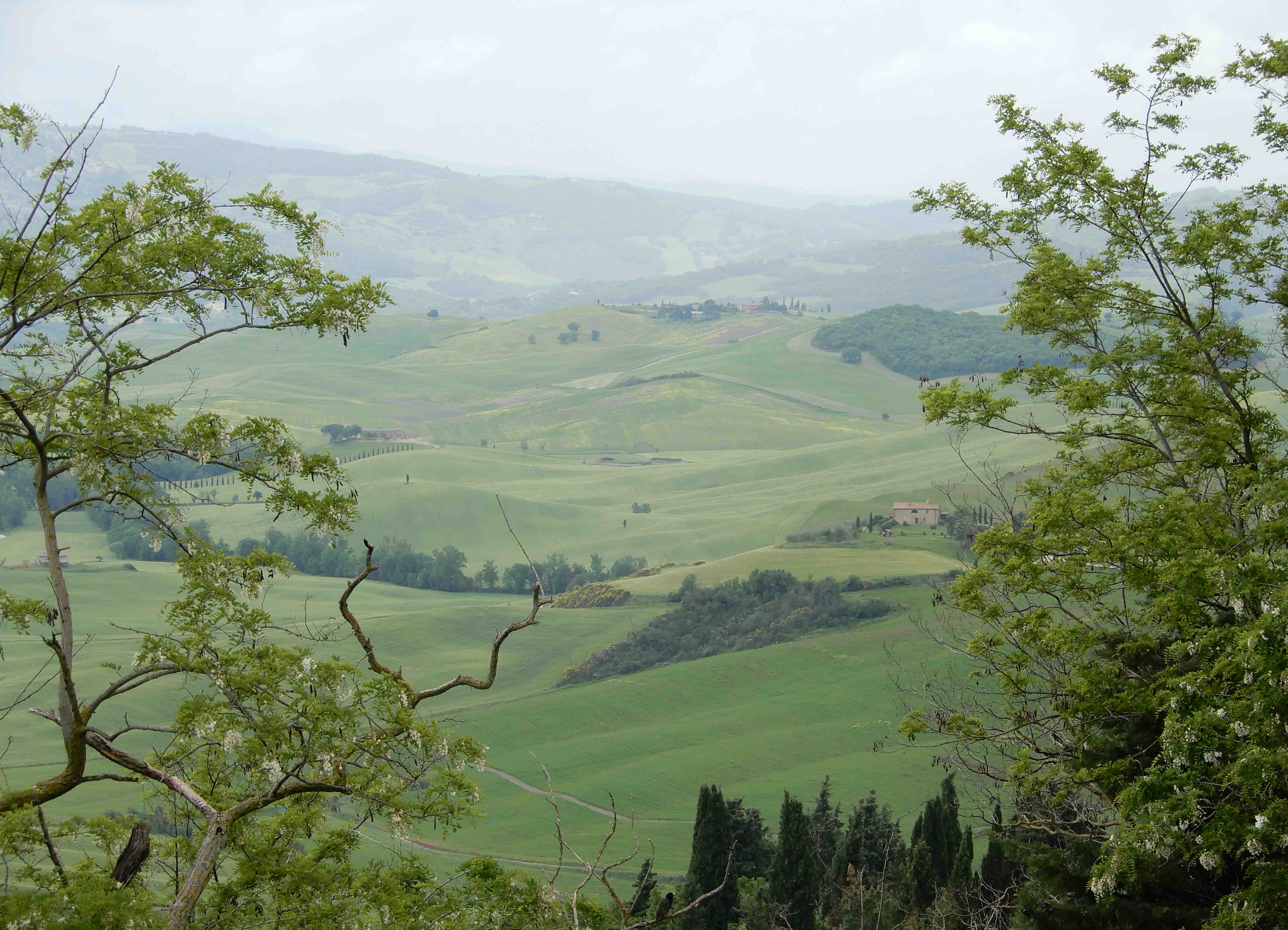 25.Val d'Orcia
