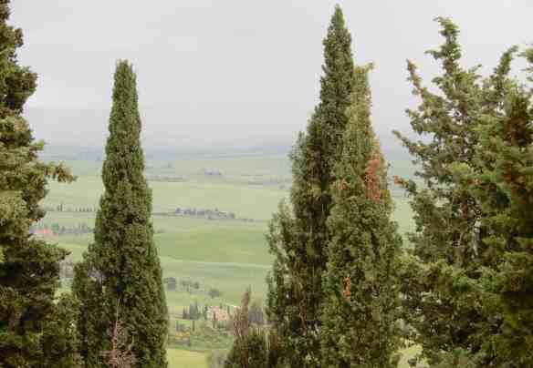 36.Val d'Orcia