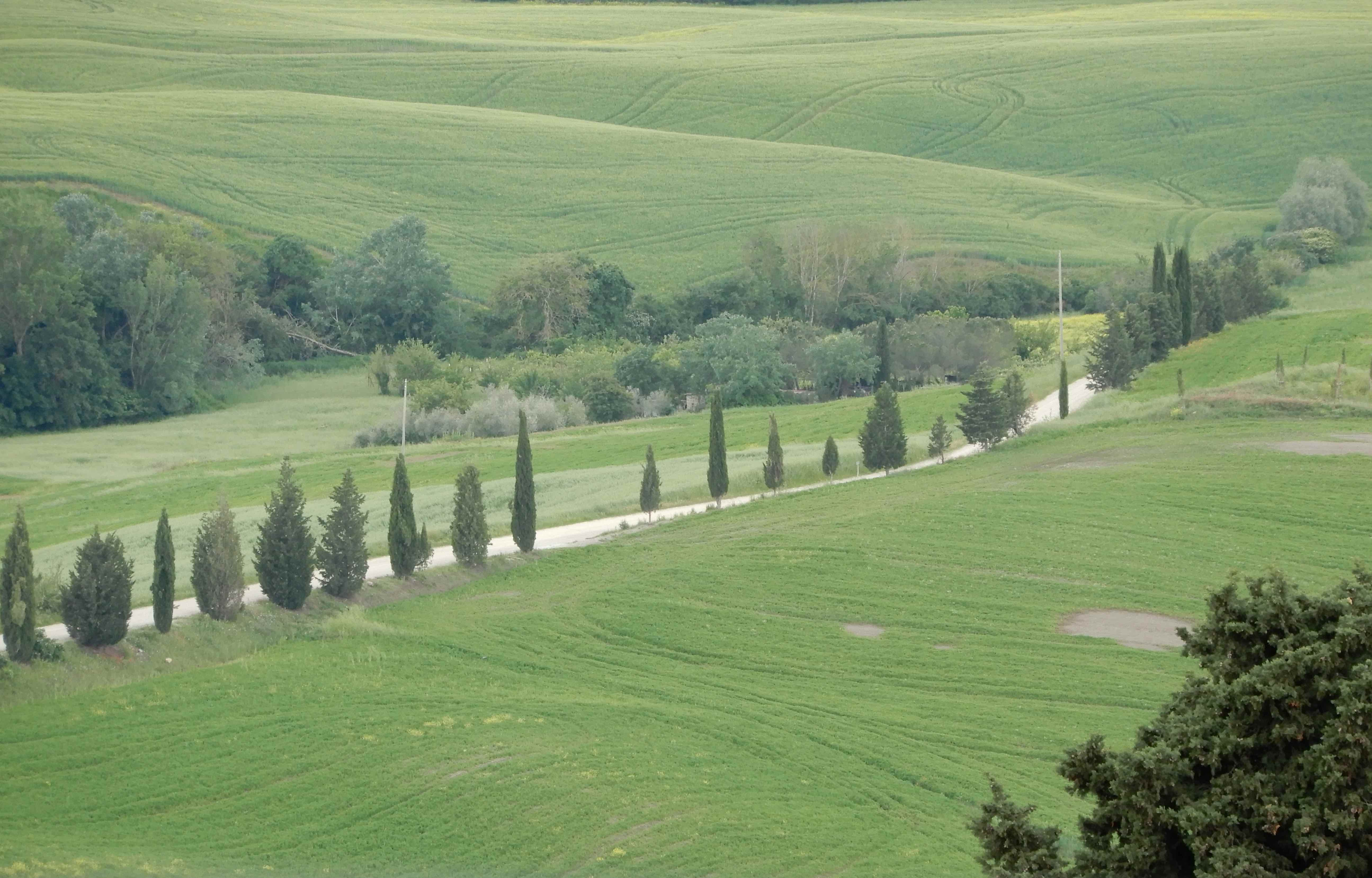 38.Val d'Orcia