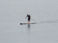 25.paddle boarder