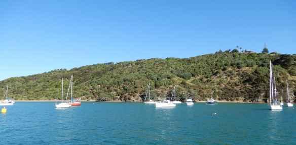 2.Matiatia Bay