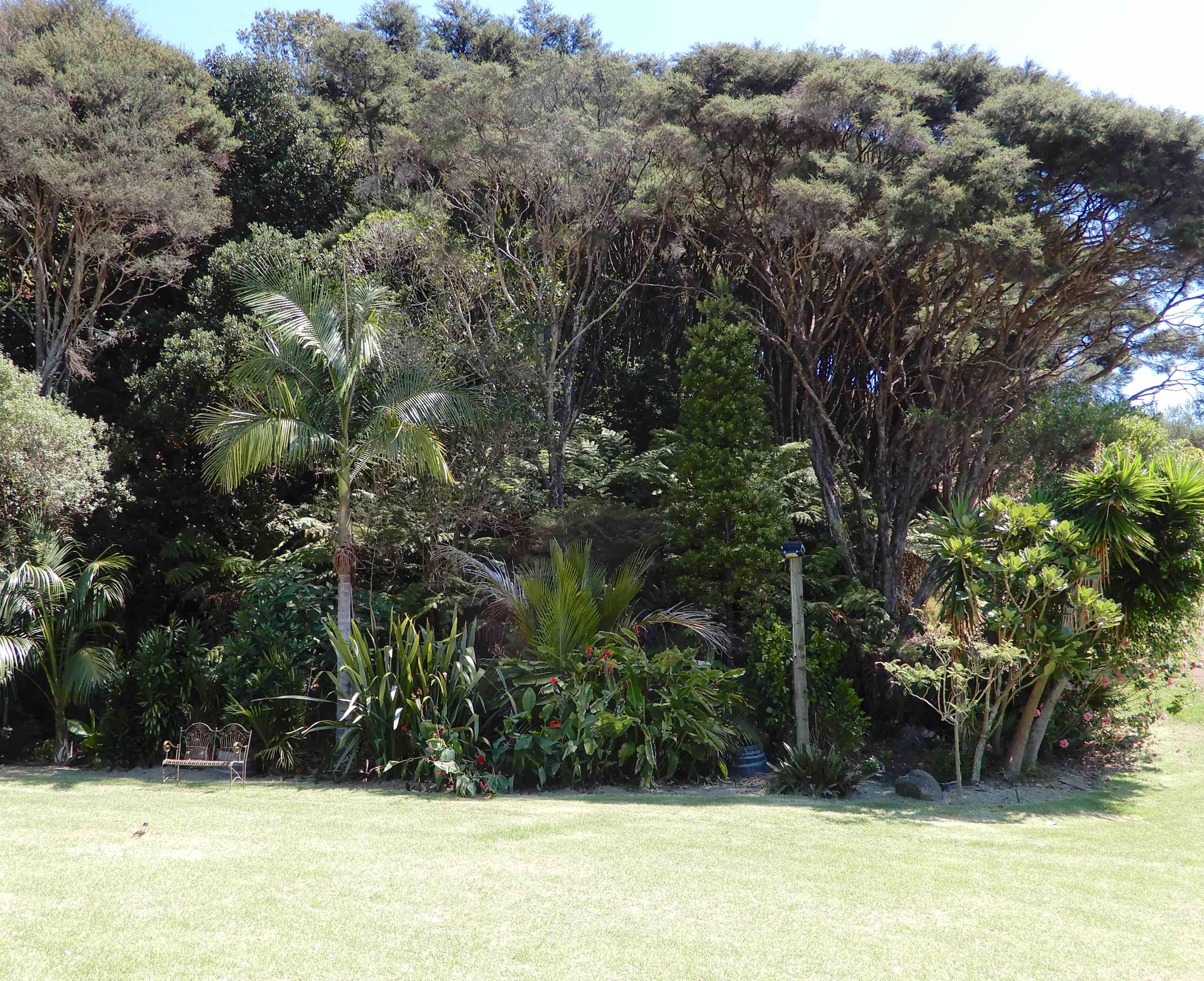26.garden