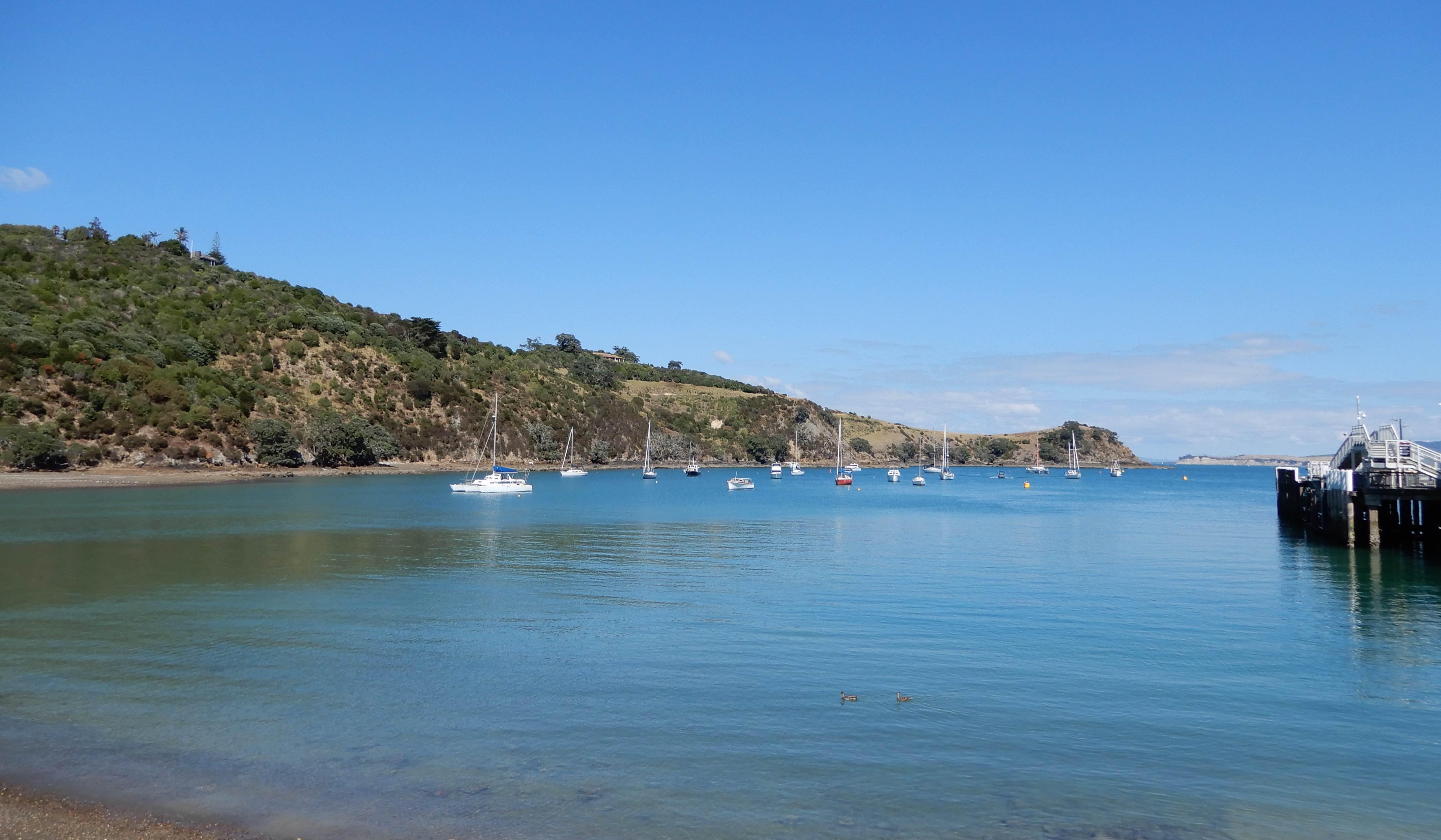 3.Matiatia Bay