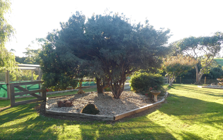 6.garden