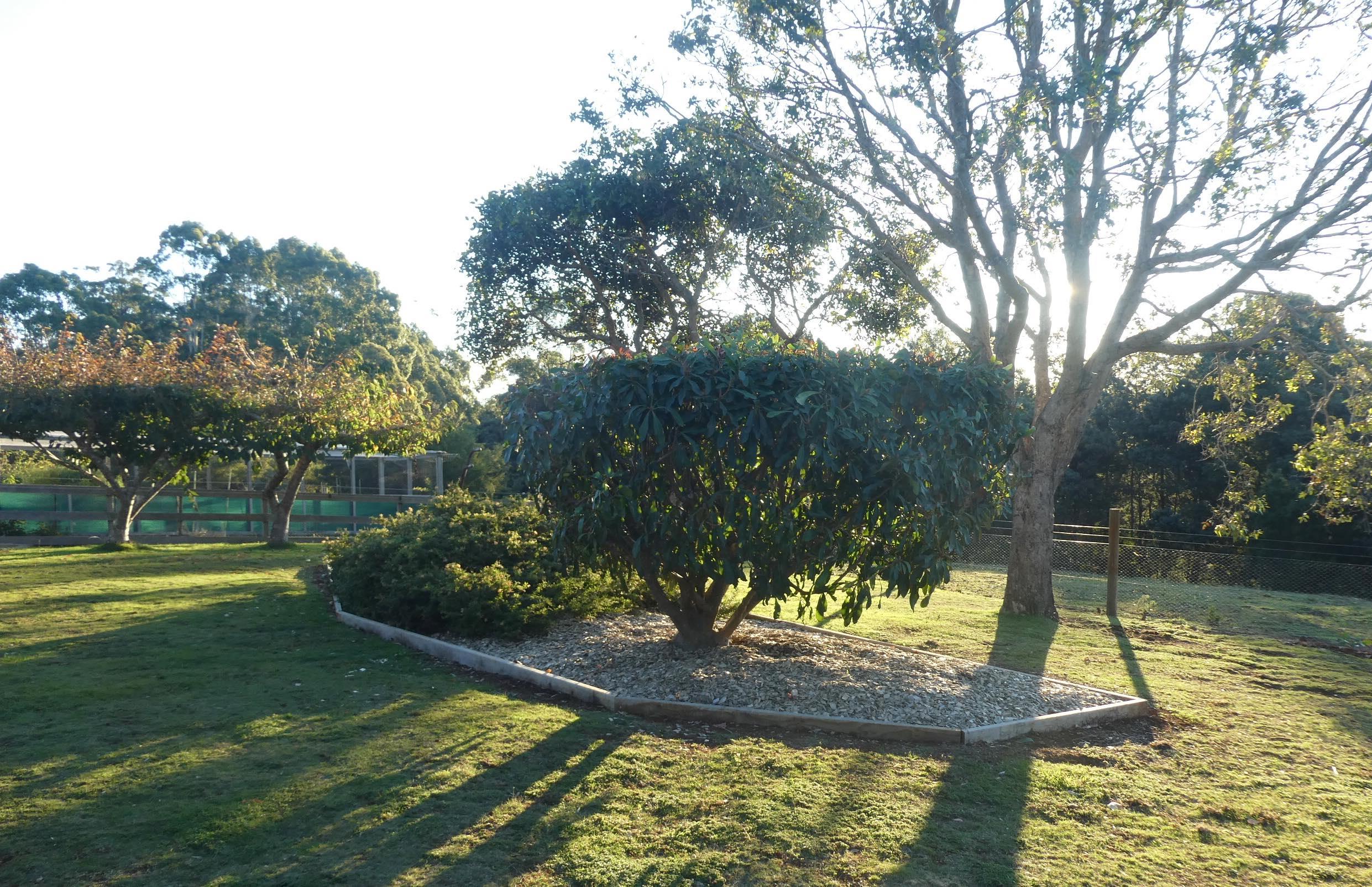 8.garden