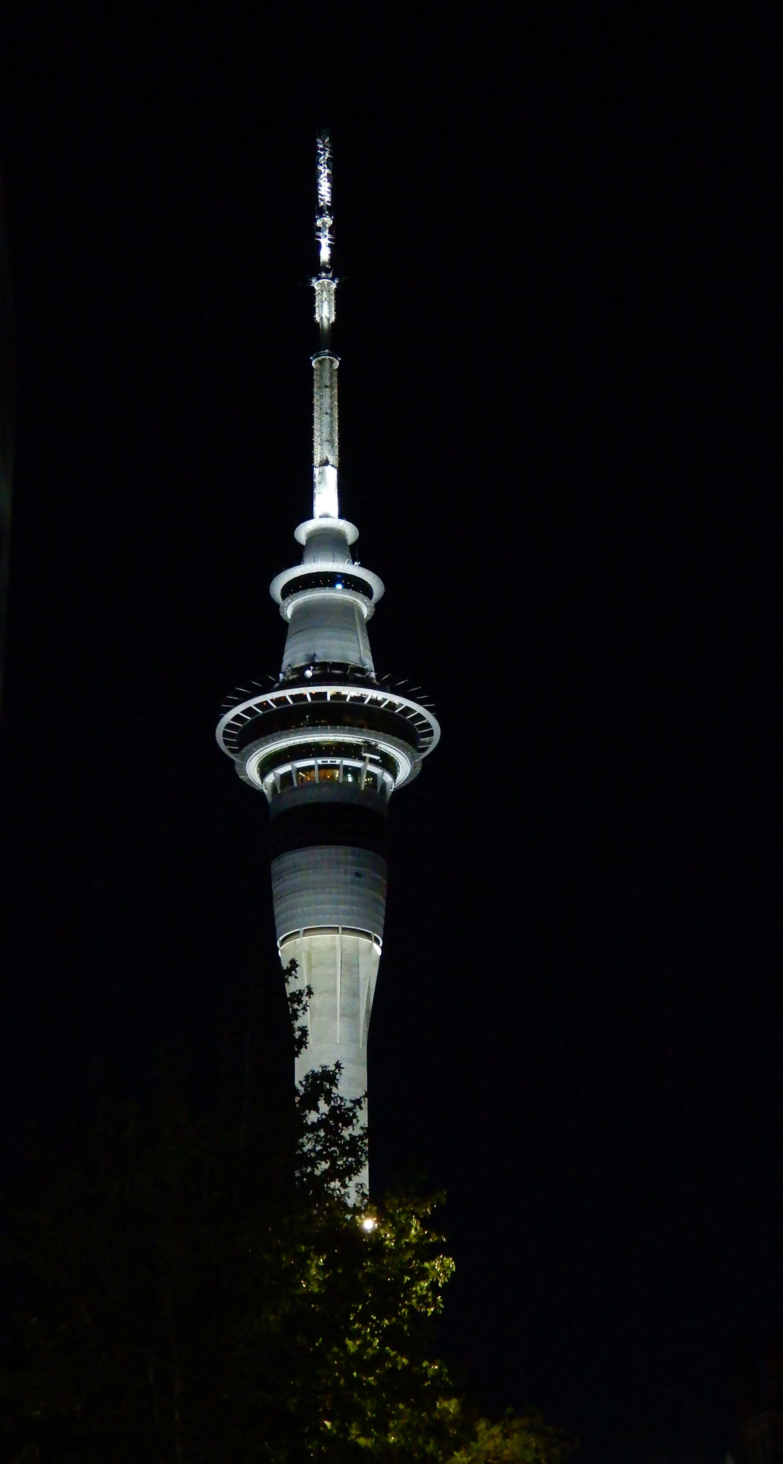 12.Sky Tower at night